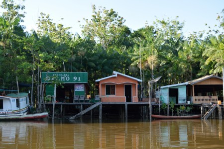 Riverside houses and a supply outpost in front of an açaí grove. Photo: Leonora Pepper