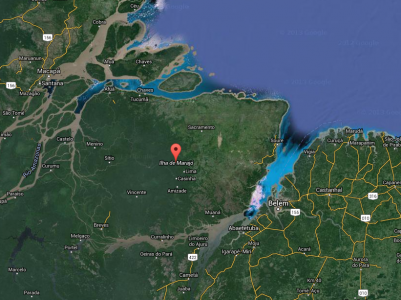 The Amazon estuary (google maps)